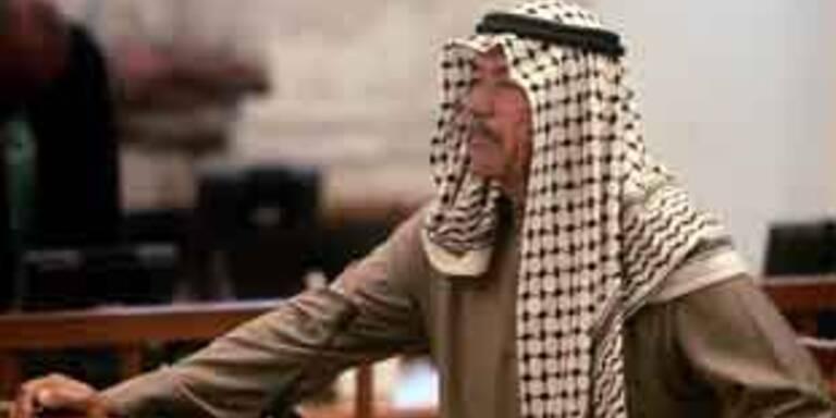 """USA liefern """"Chemie-Ali"""" nicht an den Irak aus"""