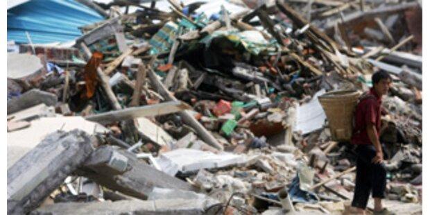 Schwein überlebte nach Erdbeben 36 Tage unter Trümmern