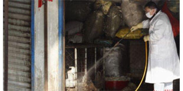 Frau stirbt in Peking an Vogelgrippe
