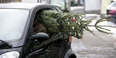 Tipps für sicheren Christbaum-Transport