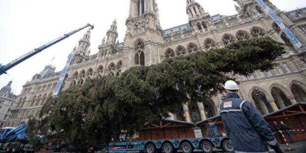 Weihnachtsgaudi vor dem Rathaus