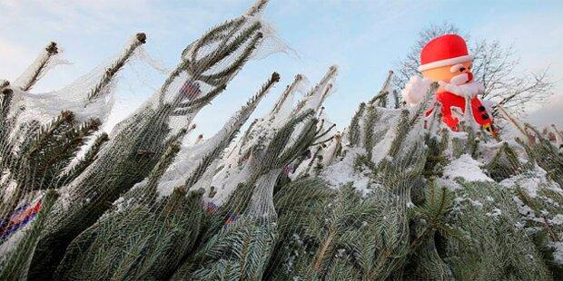 Schnee-Check: Wo Weihnachten weiß wird