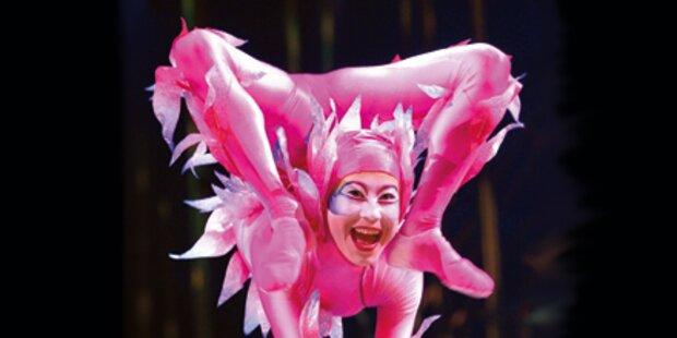 Akrobaten treten lieber in Wien auf