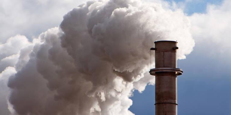 Kohlenstoffdioxid macht dick