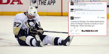 TV-Sender trollt Pittsburgh Penguins