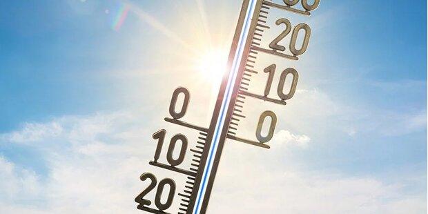 Februar derzeit um zehn Grad zu warm
