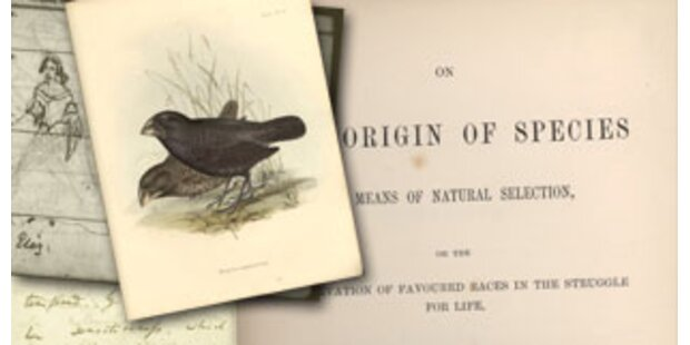 Darwins Evolutionstheorie komplett im Web