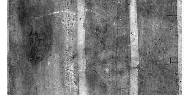 Bilder auf Rückseite von Da-Vinci-Gemälde entdeckt