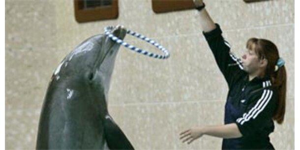 """Delfine in der Austimus-Therapie """"reinste Tierquälerei"""""""