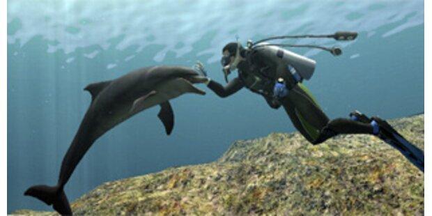 Delfin rettete Walen in Neuseeland das Leben