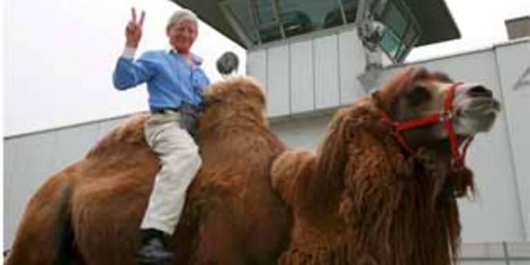 Mann trat Haft in München auf Kamel an