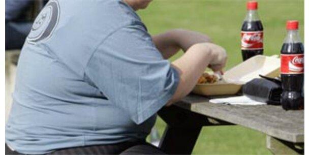 Die Deutschen sind zu dick