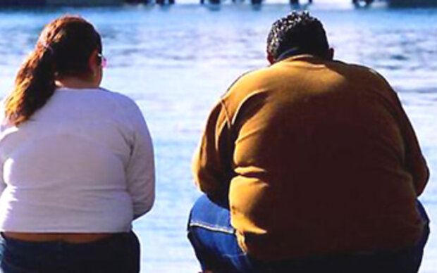Braunes Fett senkt Übergewicht