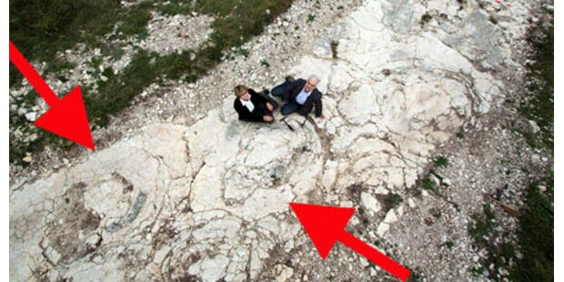 Größte Dino-Fußspur der Welt entdeckt