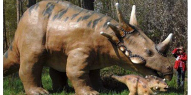 Auch Dinosaurier hatten Rückenschmerzen