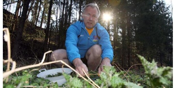 Dörfler propagiert privaten Gemüseanbau
