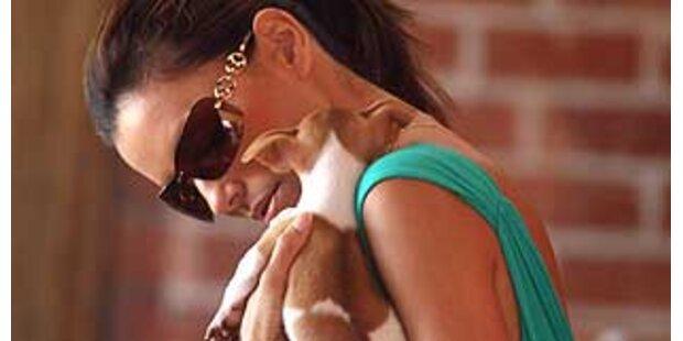 Ist Eva Longoria eine Hundequälerin?