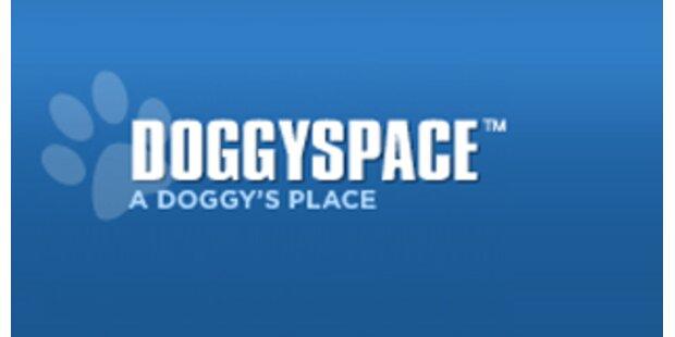 Social Network für Hunde