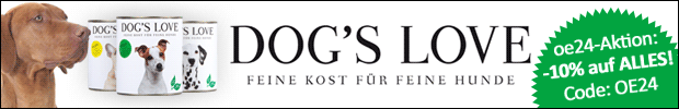 dogs_love_artikel_fullbanner.png