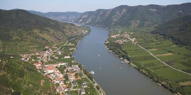 Schwangere erschlagen und in Donau geworfen