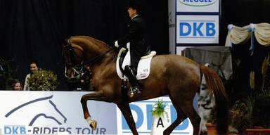 Totes Swarovski-Pferd: Tierarzt muss 250.000 Euro zahlen