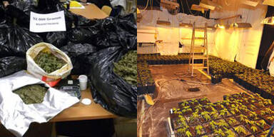 Fünf Drogendealer in OÖ verhaftet