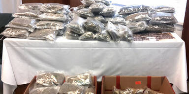 40 Festnahmen bei Drogen-Razzia