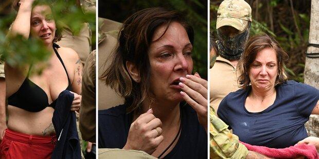 Dschungelcamp: Prügel-Drama um Danni Büchner