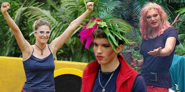 Wer gewinnt die Dschungel-Krone?