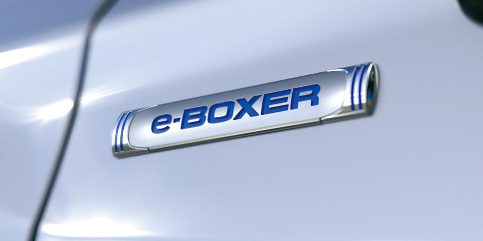 e-BOXER_teaser_picture-960.jpg