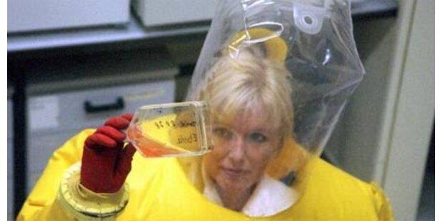 Neues Killervirus entdeckt