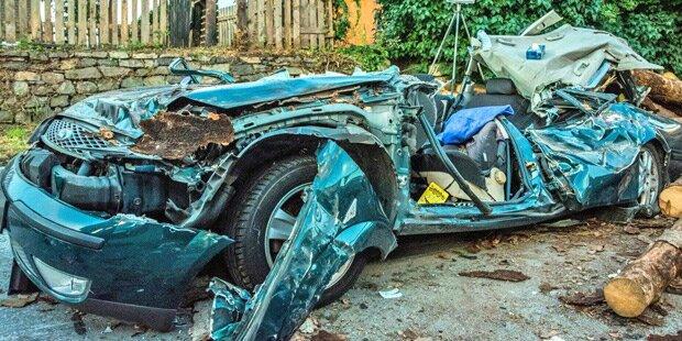 Horror-Crash: Baumstämme krachen auf Auto