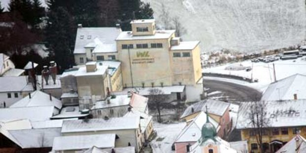 Haschisch-Bauern kauften sich Mühle