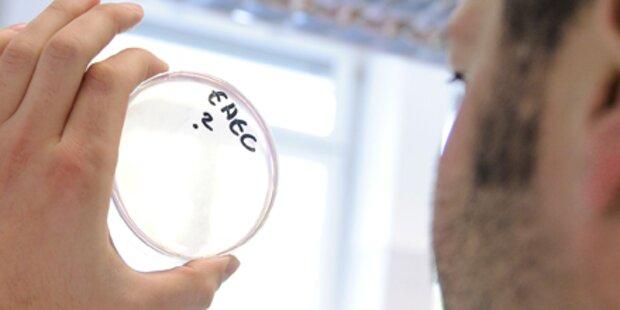 Österreicher nicht mit EHEC infiziert