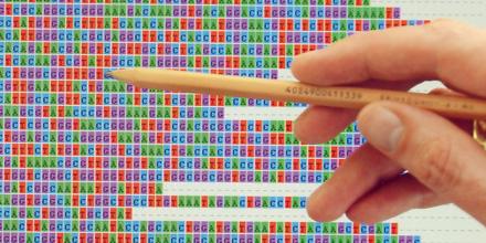 EHEC Genetik