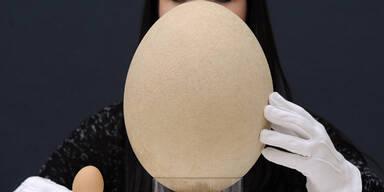 Riesen-Ei wird in London versteigert