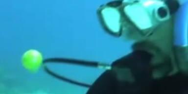 Faszinierend: Ein rohes Ei unter Wasser