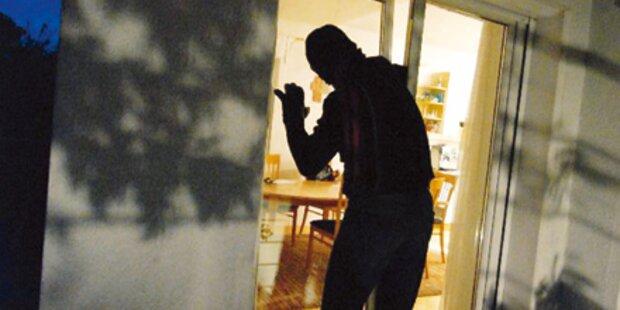 8-köpfige Bande nach 42 Straftaten gefasst