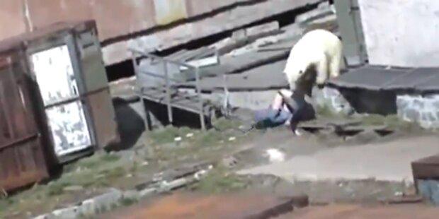 Eisbär greift Frau in Russland an