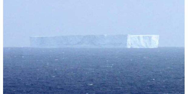 Eisberge bewegen sich auf Neuseeland zu