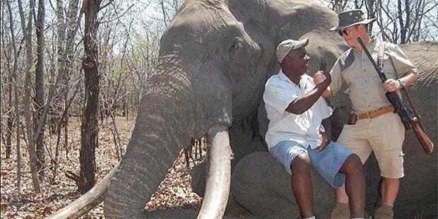 Deutscher Jäger tötet legendären Elefanten