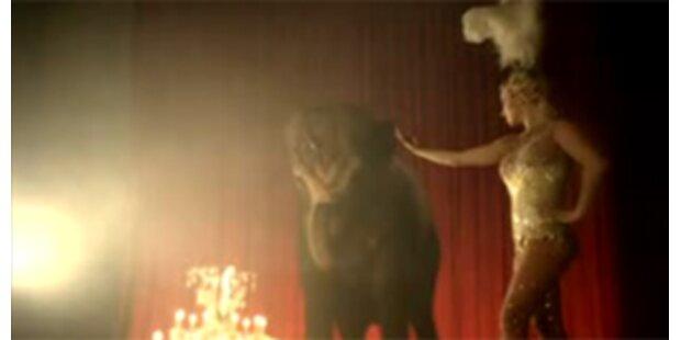 Britney wegen Tierquälerei am Pranger