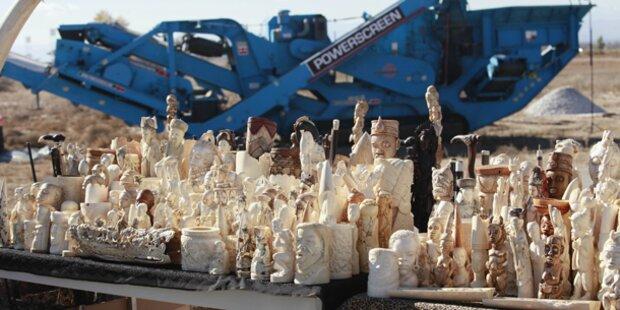 Tonnenweise illegales Elfenbein zerstört