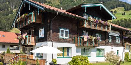 Causa Casinos führte Ermittler bis nach Osttirol
