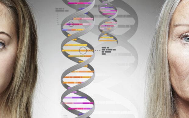 Junk-DNA gibt es doch nicht