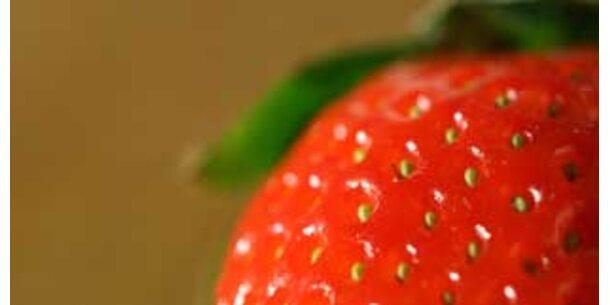 Gefährliche Pestizide in Lebensmitteln