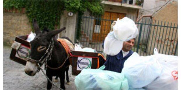 Stadt in Sizilien ersetzt Müllwagen durch Esel