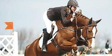 50.000€-Rennpferd ist 2. Todesopfer