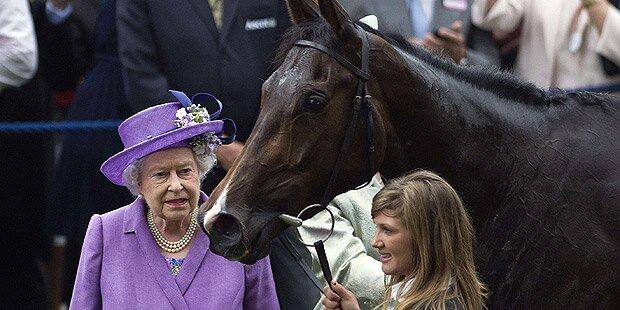 Doping-Skandal um Rennpferd der Queen