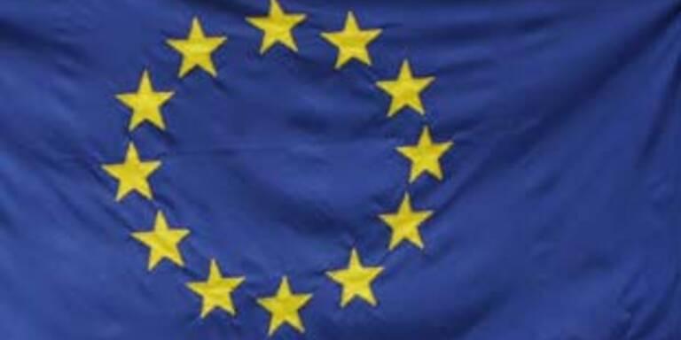 Mehrheit will Volksabstimmung zu EU-Reformvertrag